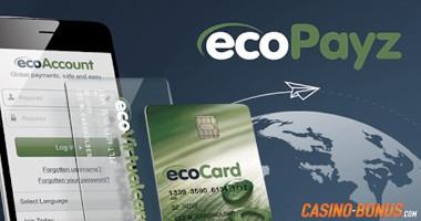 ecopayz payment provider